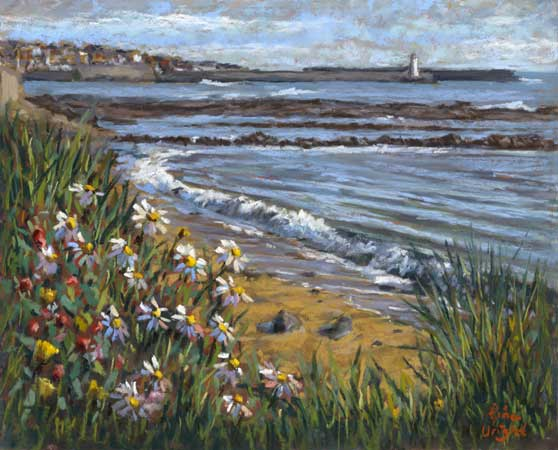 Daisy flowers in dunes with the sea and a harbour in the distance