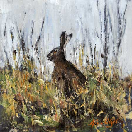 Hilltop Hare