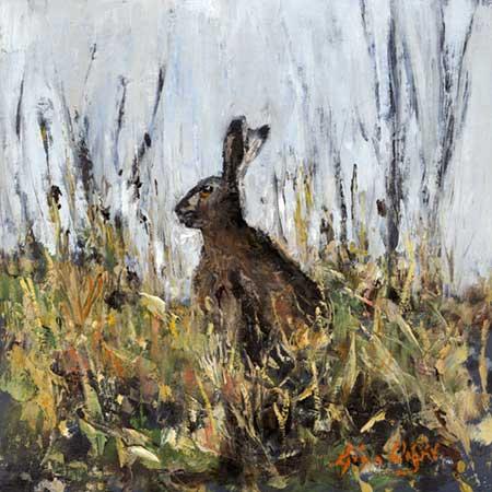 Hilltop Hare