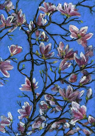 Magnolia On Blue