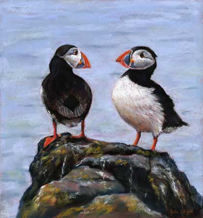 Puffin Duo, Pastel on Panel