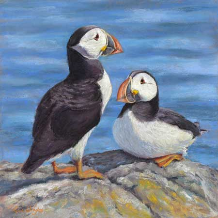 Two puffins on a rock in the sun