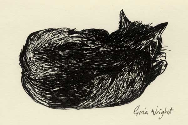 Sleeping Cat One, Ink Sketch