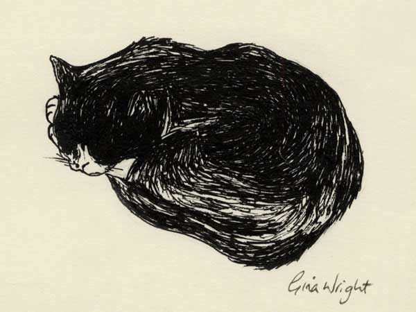 Sleeping Cat Two, Ink Sketch