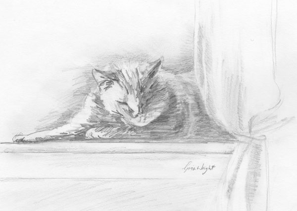 Sleeping in the Sun, Pencil Sketch