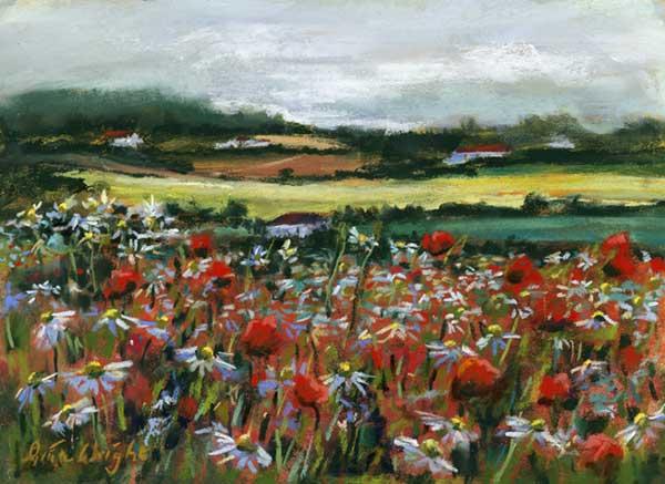 Wild Flowers, Fife