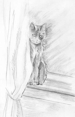 Xena, The Artist's Cat, Pencil Sketch