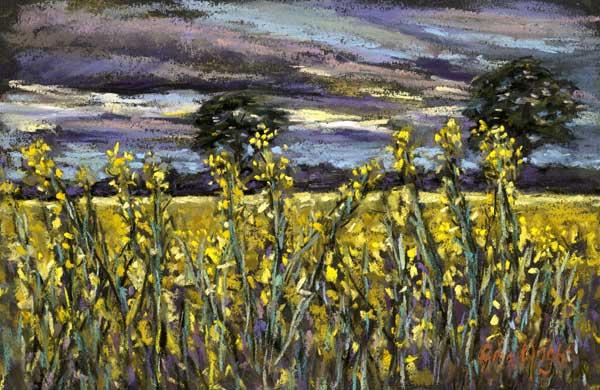 Yellow Field At Dusk